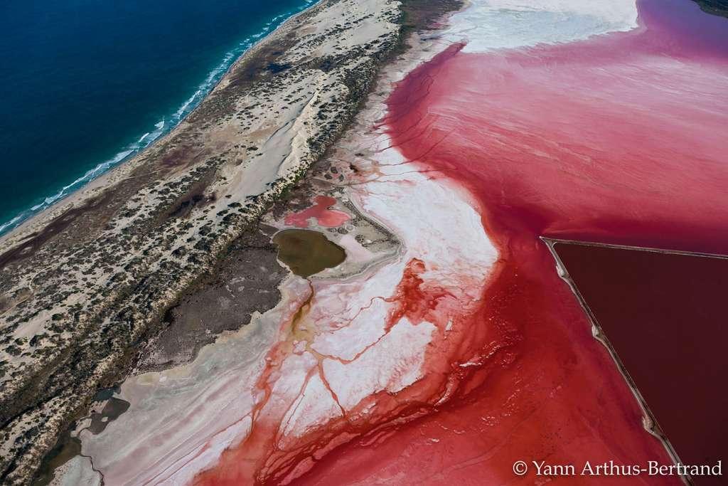 Les eaux roses du lagon Hutt
