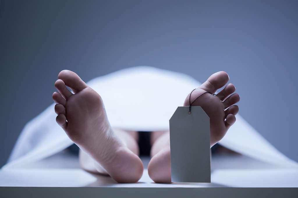 L'étude de l'expression des gènes post-mortem pourrait permettre de déterminer l'heure d'un décès dans le cadre d'une enquête criminelle. © Photographee.eu, Shutterstock