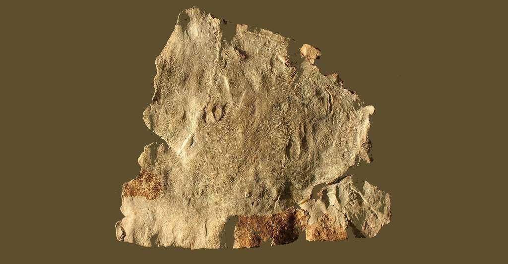 Fragment de la tablette de l'Hospitalet-du-Larzac, conservée au Musée de Millau (Aveyron). © Pankratos - Domaine public