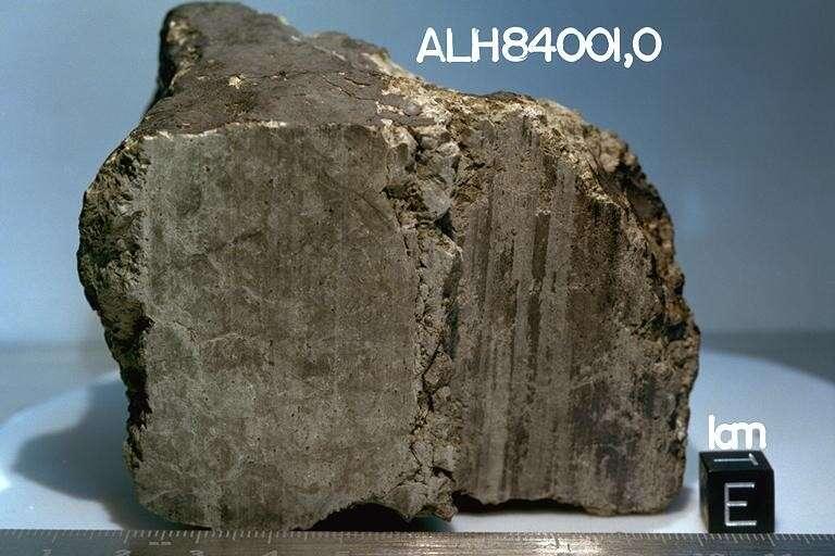 Un morceau de la météorite martienne ALH84001. © Nasa-Caltech