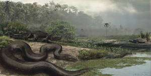 Cliquer pour agrandir. Un crocodiliforme passe imprudemment à côté d'un titanoboa qui pourrait en faire son repas. © J. Bourque / Université de Floride