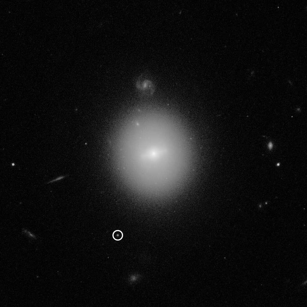Cette image du télescope spatial Hubble a identifié l'emplacement d'un trou noir de masse intermédiaire, pesant 50.000 fois la masse de notre Soleil (ce qui le rend beaucoup plus petit que les trous noirs supermassifs trouvés au centre des galaxies). Le trou noir, nommé 3XMM J215022.4−055108, est indiqué par le cercle blanc. L'imagerie à haute résolution de Hubble montre que le trou noir se trouve à l'intérieur d'un amas dense d'étoiles bien au-delà de notre Galaxie, la Voie lactée. © Nasa, ESA, and D. Lin (University of New Hampshire)