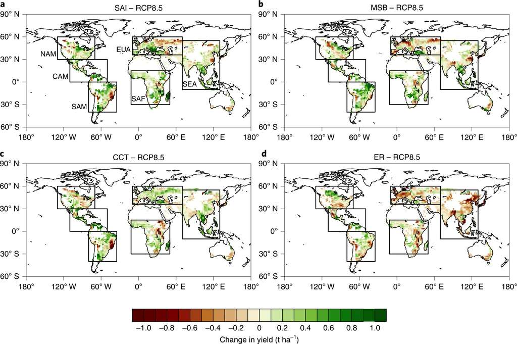 Variation du rendement des cultures selon les 4 scénarios étudiés : a) injection d'aérosols stratosphériques ; b) éclaircissement des nuages marins ; c) amincissement des nuages cirrus ; d) réduction des émissions de CO2. © Yuanchao Fan et al., Nature Food, 2021
