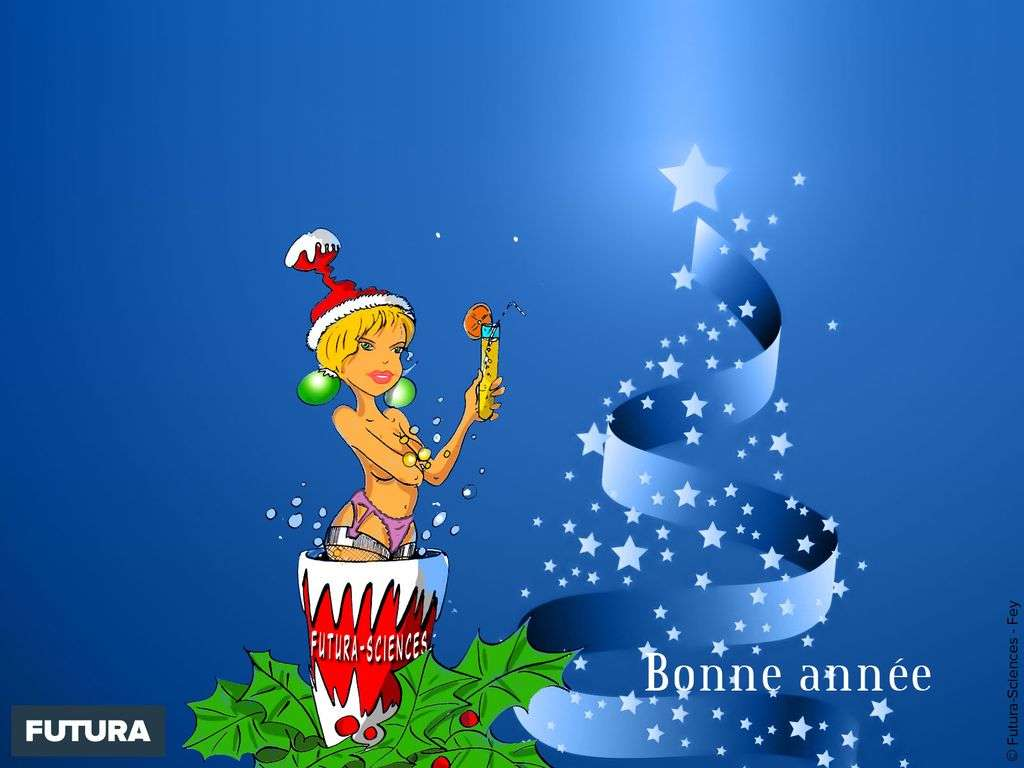 Meilleurs Voeux et Bonne Année