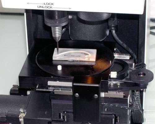 Section de coquille (enrobée dans de la résine) fixée sur la platine du micromill (® Merchantek) prête à être échantillonnée (longueur de la section ~ 4 cm). © C.E. Lazareth, IRD. Reproduction et utilisation interdites