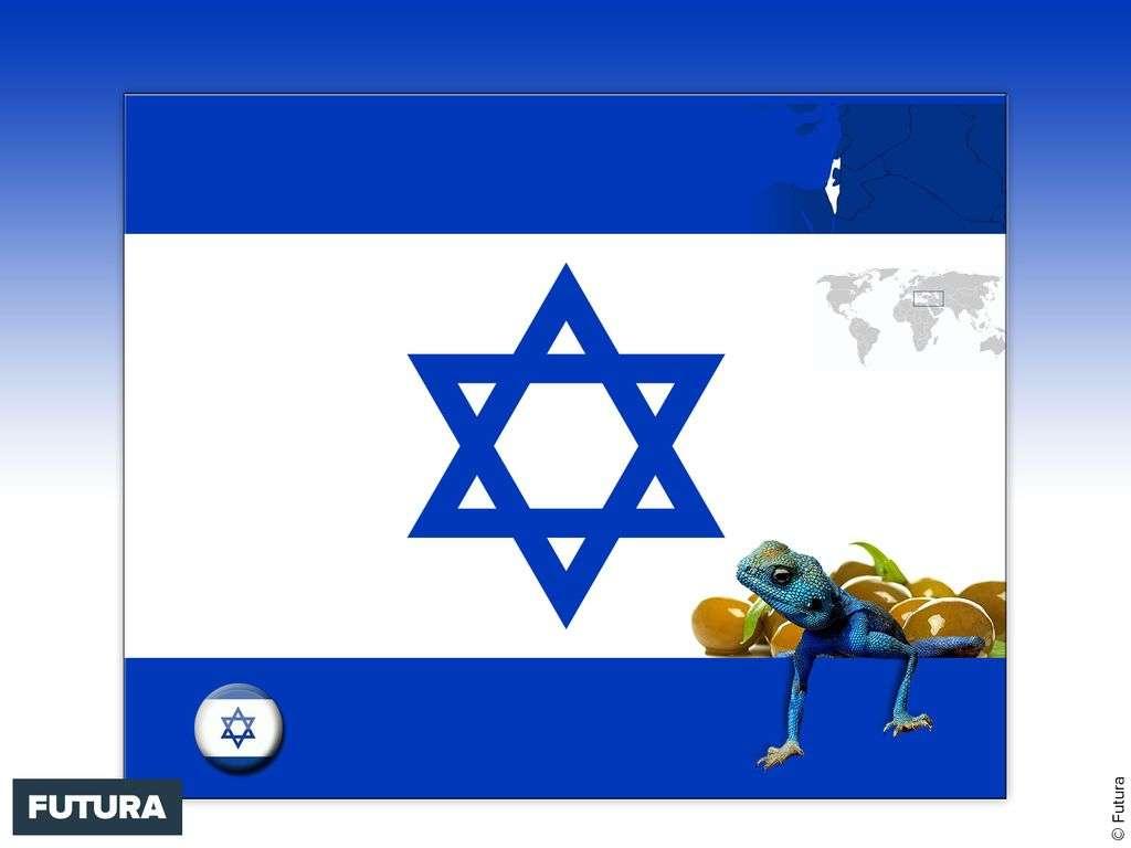 Drapeau : Israël