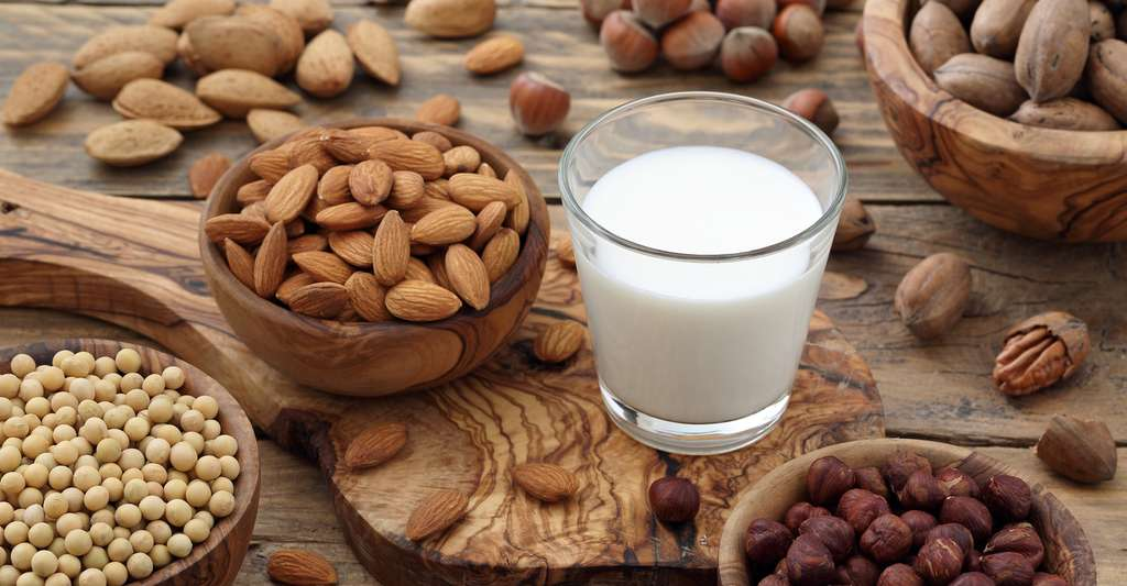 Depuis un arrêt rendu par la Cour européenne de justice au mois de juin 2017, les produits végétaux ne pourront plus être appelés laits, beurres, yaourts, etc. © denio109, Fotolia
