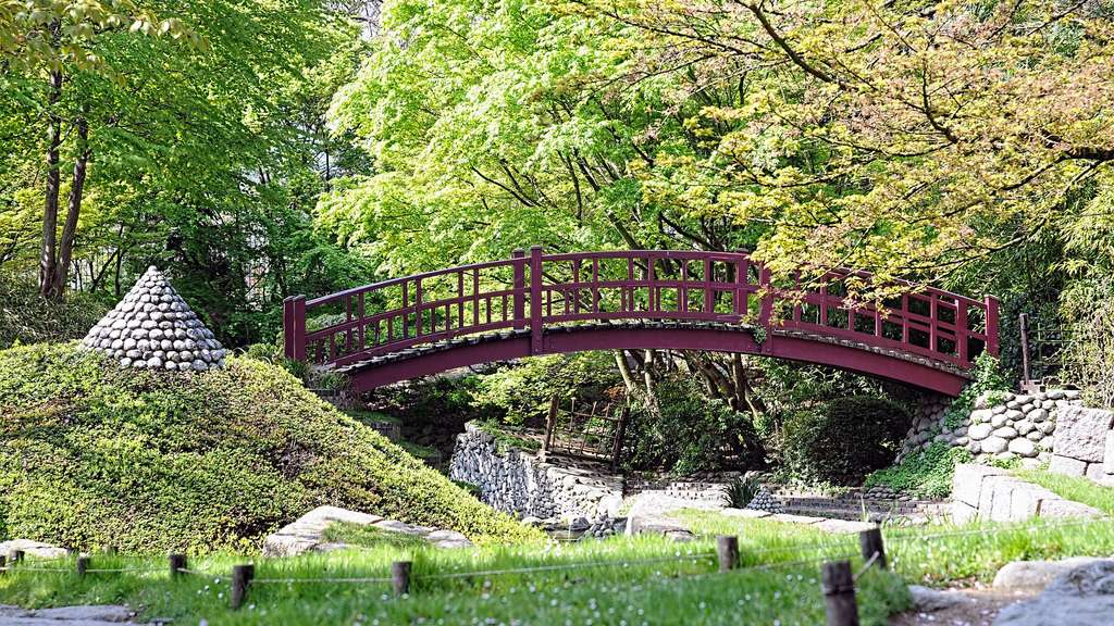 Les jardins Albert Kahn : un jardin japonais aux portes de Paris