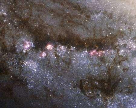 Les bras de la galaxie M 66 présentent des régions roses où naissent les étoiles. Crédit Nasa/Esa/Hubble Heritage