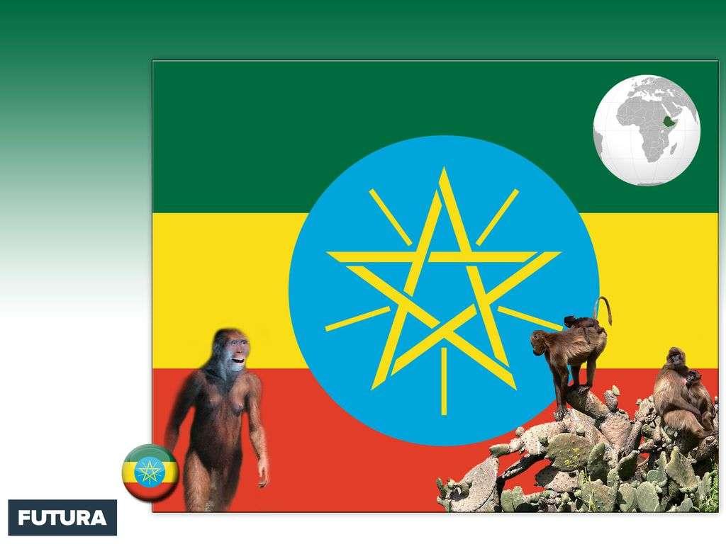 Drapeau : Ethiopie