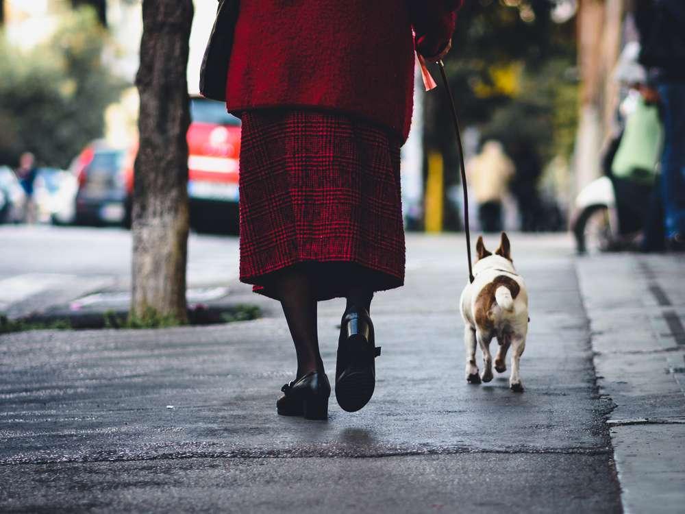 Promener son chien, une activité à risque ? © Sober Rabbit, Flickr
