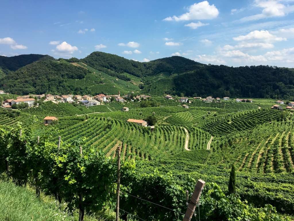 Les collines dans la région de production traditionnelle du prosecco, vers Valdobbiadene, se dégradent au rythme de 59,8 tonnes par an et par hectare. © Darren & Brad, Flickr