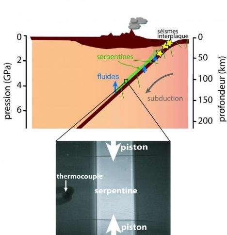 Les chercheurs ont reconstitué en laboratoire les conditions de température et de pression s'excerçant sur la serpentine, ici en vert sur le schéma d'une zone de subduction. Crédit : CNRS / ENS Lyon / Université Lyon 1