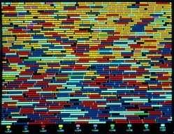 Vie artificielle du logiciel Tierra de Tom Ray. © DR