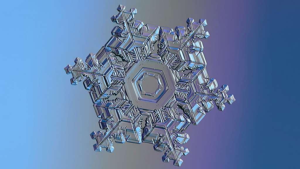 La physique des flocons de neige
