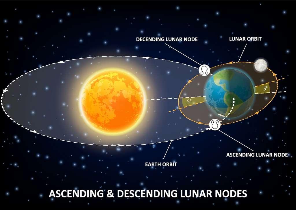 Lors de sa rotation autour de la Terre, la lune coupe régulièrement le plan de l'orbite terrestre (plan de l'écliptique). Le passage entre deux nœuds ascendants ou descendants est appelé révolution draconitique et dure 27 jours, 5 heures, 5 minutes et 36 secondes. Néanmoins, les nœuds eux-mêmes se déplacent dans le sens rétrograde de 19,354° par an, ce qui correspond à un cycle de 18,6 ans. © Siberian Art, Adobe Stock
