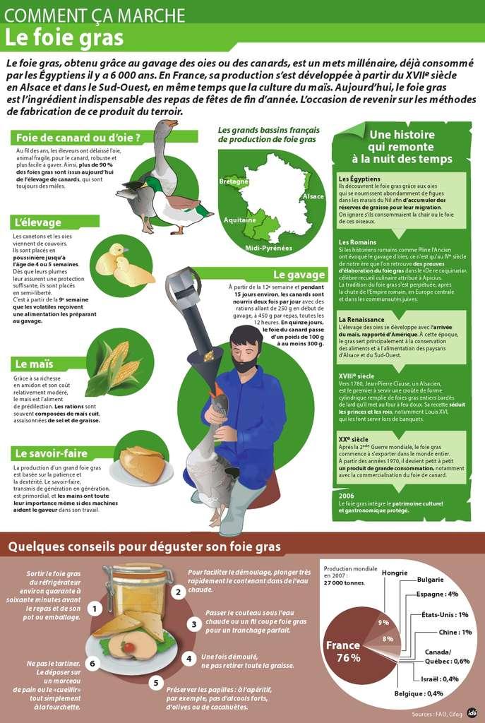 Une infographie pour comprendre l'origine et la meilleure façon de déguster le foie gras
