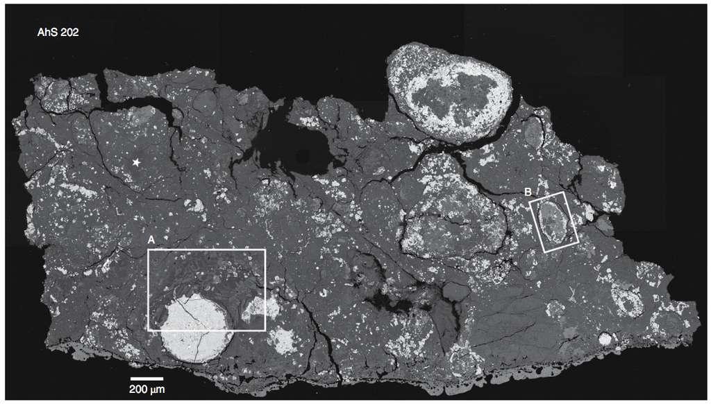 Image en électrons rétrodiffusés (contraste de numéro atomique) de AhS 202. Les zones plus claires représentent des numéros atomiques plus élevés. © Hamilton et al. 2020, Nature Astronomy