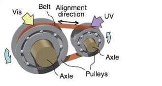 Schéma de principe du moteur. La courroie (Belt) est formée d'une couche de polymères (50 microns) surmontée d'une couche de LCE (18 microns) et mesure 36 par 5,5 millimètres. Elle réunit deux poulies (Pulleys), dont les diamètres sont de 10 et 3 millimètres. A gauche arrive la lumière visible (Vis), de longueur d'onde supérieure à 500 nanomètres, avec une puissance de 120 mW/cm2. A droite, la courroie est éclairée en ultraviolet (UV), à 360 nm et 240 mW/cm2. © Wiley-VCH Verlag
