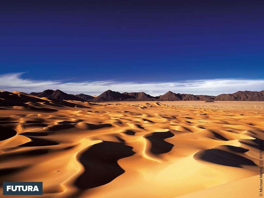 Dunes du Sahara dans la région d'Arakao au Niger