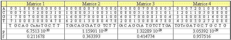 Tableau 4. Résultat de consensus