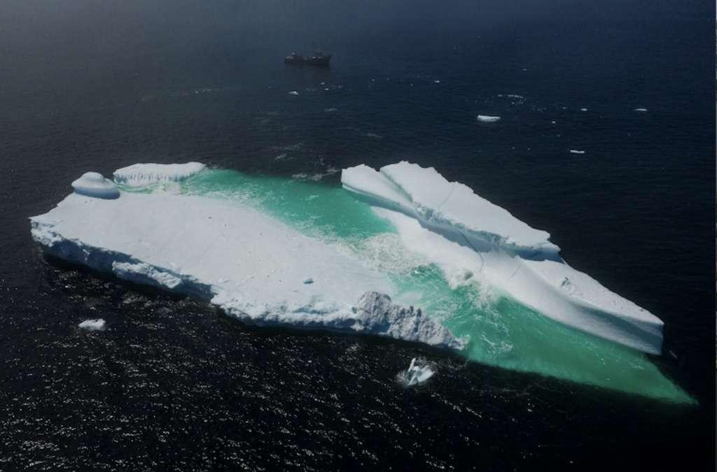 Un iceberg flottant près de Terre-Neuve, le 29 juin 2019. © Johannes Eisele, AFP/Archives