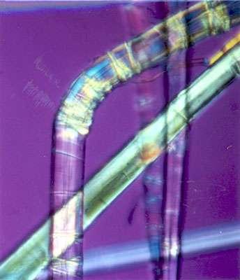 Fibre montrant la succession des genoux (microscope polarisant) © B.Media
