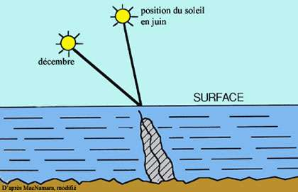 La croissance des stromatolites suit la direction du soleil. © DR