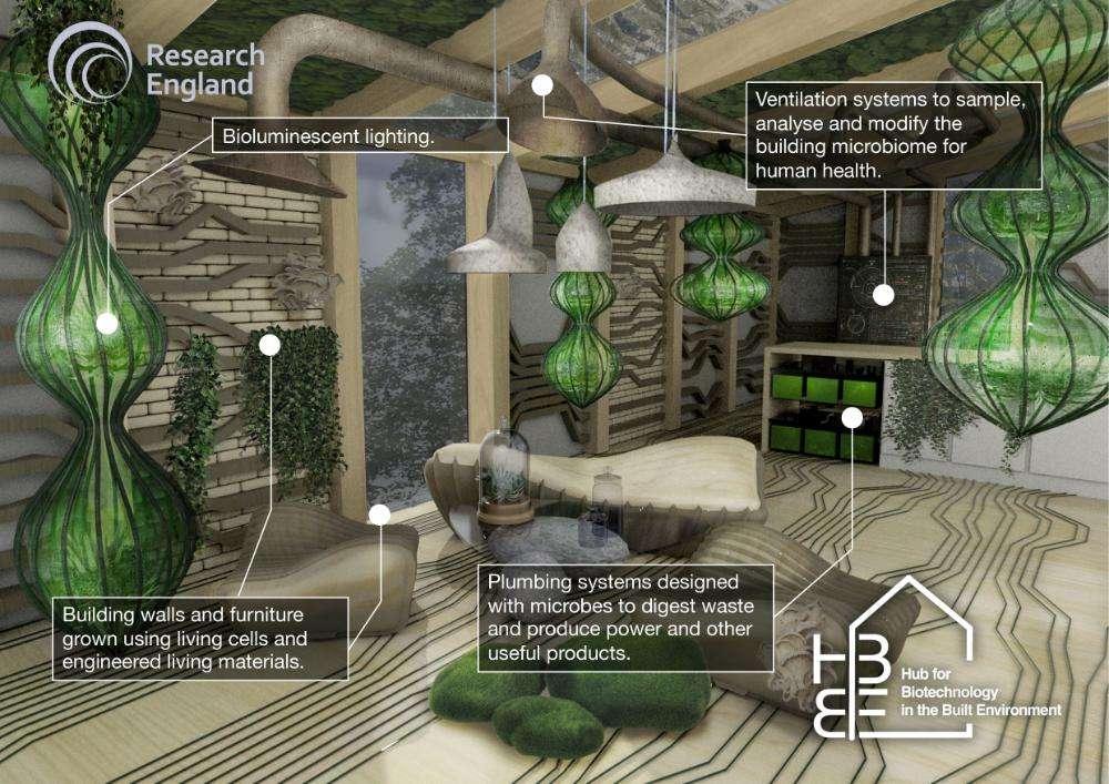 Les chercheurs du premier centre de recherche au monde consacré aux applications des biotechnologies dans le bâtiment imaginent nos villes de demain peuplées de bâtiments vivants, qui meurent doucement pour ensuite devenir le socle d'une nouvelle génération de maisons encore plus adaptée à son environnement et à ses habitants. © Assia Stefanova, HBBE