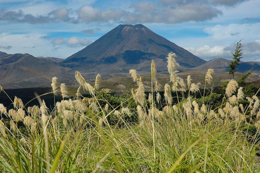 Le volcan Ngaruhoe, qui tint lieu du « Mont Doom » lors du tournage du Seigneur des Anneaux. © Antoine, tous droits réservés
