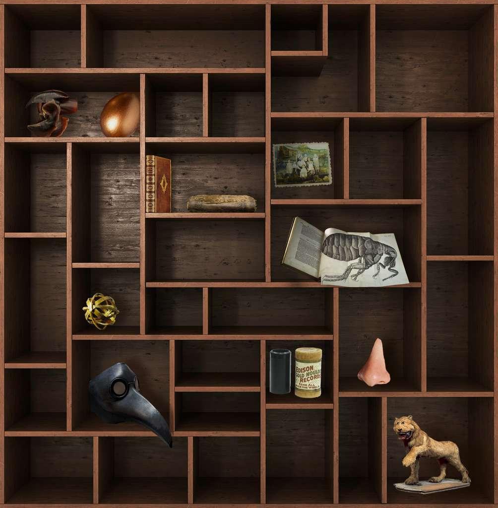 Et de dix ! Rendez-vous dans deux semaines pour un nouveau chapitre du Cabinet de curiosités. © nosorogua, Adobe Stock, Futura