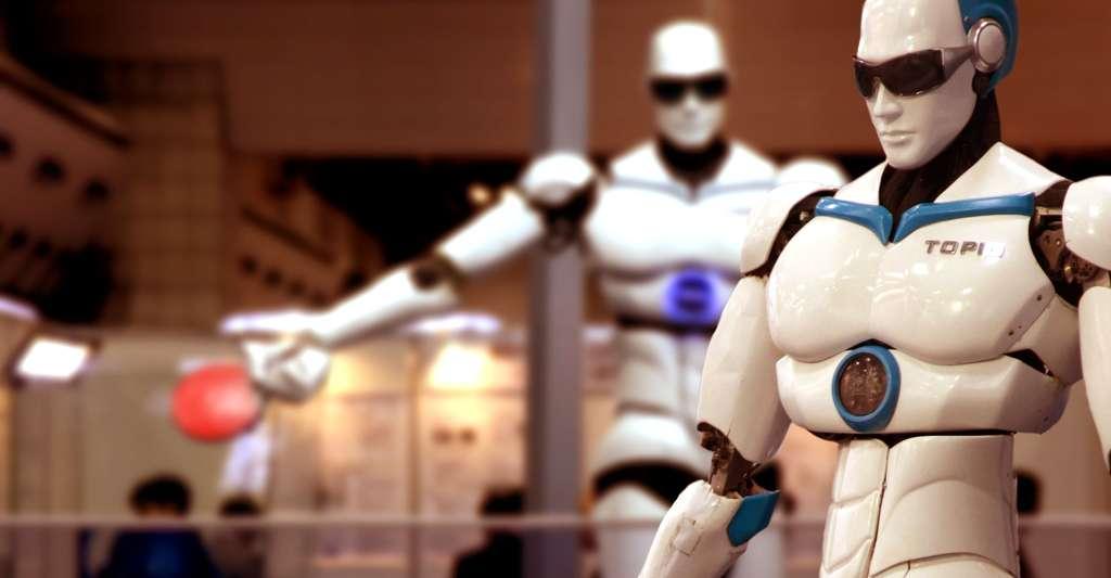 Le robot Topio. © Humanrobo, CC by-sa 3.0