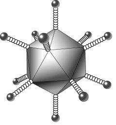 Le vaccin anticocaïne est issu de la modification d'un adénovirus, auquel un analogue de la cocaïne a été fixé sur les protéines de surface. © DR