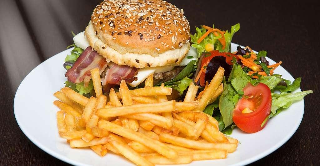 Les dérives de l'alimentation moderne. © Fclaria, DP