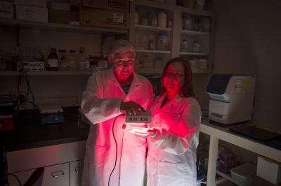 Jeri-Anne Lyons (à droite) irradie ses cellules touchées par la sclérose en plaques à l'aide d'une lumière proche infrarouge d'une longueur de 670 nm. Et leur santé semble s'améliorer. © Troye Fox, UMW Photo Service