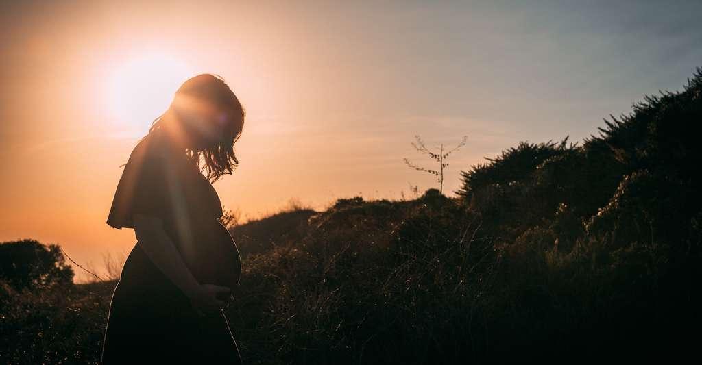 Les hormones reproductrices assureraient un rôle protecteur, ce qui expliquerait pourquoi les formes graves de la Covid-19 touchent moins les femmes que les hommes. © Josh Bean, Unsplash