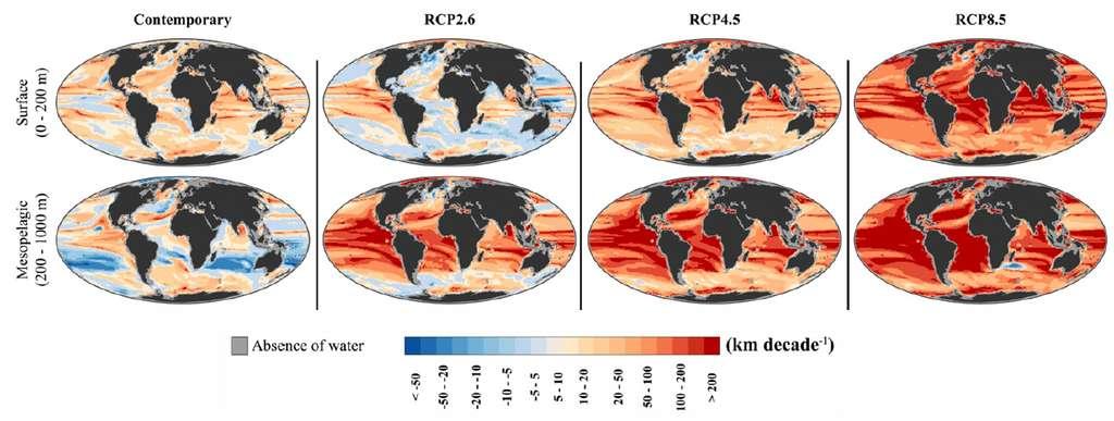 La vitesse climatique en kilomètre par décennie pour les températures des océans maintenant (1955-2005) et les projections futures (2050-2100) à la surface de l'océan et dans les eaux mésopélagiques selon plusieurs scénarios d'émission de gaz à effet de serre. (RCP2.6, RCP4.5 et RCP8.5). © Isaac Brito-Morales et al., Nature Climate Change