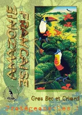 En Guyane, les toucans sont appelés « gros becs ». © DR