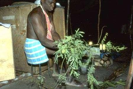 Préparation d'un remède d'invincibilité. Village de Banafokondre, pays Saramaka, Suriname. © IRD, Michel Sauvain, tous droits de reproduction interdits