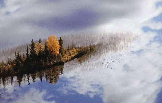 États-Unis, Alaska. Région d'Anchorage. Glacier Knick. Petits îlots en automne. © Photo Yann Arthus-Bertrand - Tous droits réservés