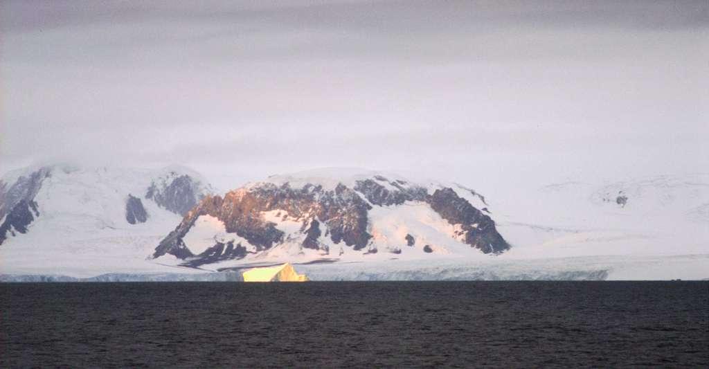 Les chercheurs ont prélevé leurs échantillons de mousses sur trois sites séparés de près de 650 kilomètres, dans la partie septentrionale de la péninsule antarctique — ici, sur l'île de l'éléphant qui tient son nom de la colonie d'éléphants de mer qui la peuplait à sa découverte —, celle qui serait la première à montrer des signes de changement climatique. © Lieutenant Philip Hall, NOAA Corps, Wikipedia, domaine public