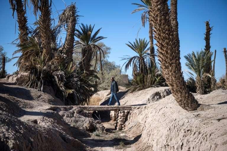Le Maroc fera partie des régions les plus durement touchées par le réchauffement climatique en Méditerranée. Sur la photo, un ruisseau asséché dans l'oasis de Skoura, dans le sud-est du Maroc, menacée d'extinction par le dérèglement climatique. © Fadel Senna, AFP