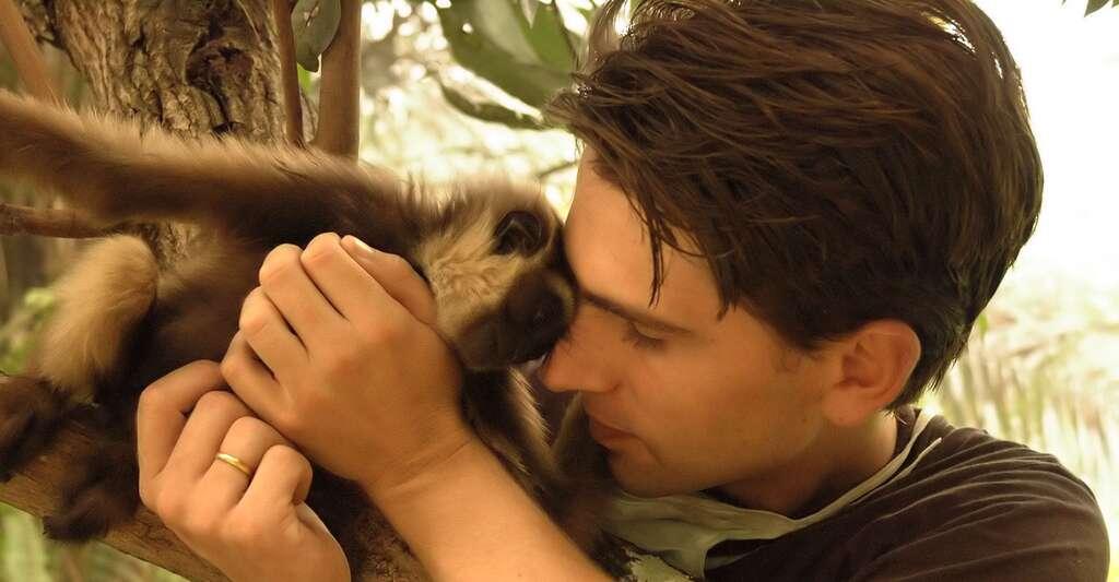 Gibbon à mains blanches. Aurélien brulé, surnommé Chanee, consacre sa vie à la sauvegarde des gibbons. Il est par ailleurs l'auteur de plusieurs ouvrages, dont Le gibbon à mains blanches, destiné à améliorer les conditions de vie des individus vivant en captivité. © Aurélien Brulé, Kalaweit