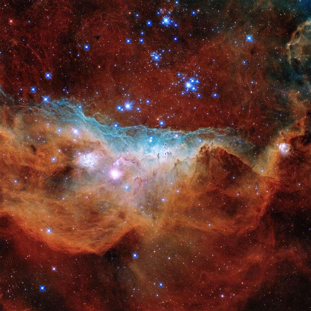 Gros plan sur NGC 2020 et sa région où se forment des étoiles. © Nasa, ESA and STScI