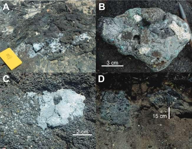 Du plastiglomerat in situ (A) recouvrant du basalte, (B) composé de plastique, de basalte et de fragments de corail, (C) en forme amygdalaire dans du basalte, (D) sous forme de larges fragments, parfois localisés à 15 cm sous la surface de sable. © Patricia Corcoranet al., GSA Today
