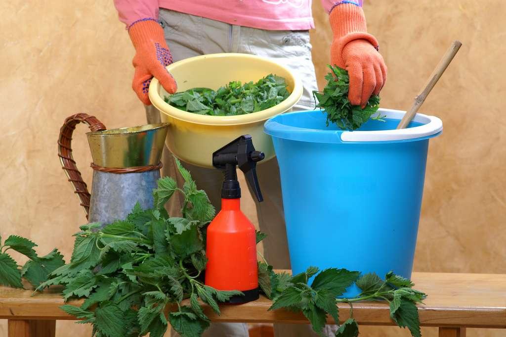 Le purin d'ortie s'achète en jardinerie mais il est aussi simple de le faire soi-même. © 7monarda, Adobe Stock