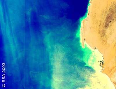 Les couleurs observées par MERIS traduisent la concentration en chlorophylle détectable depuis 1/100000000 de grammes par litre. Photo © ESA