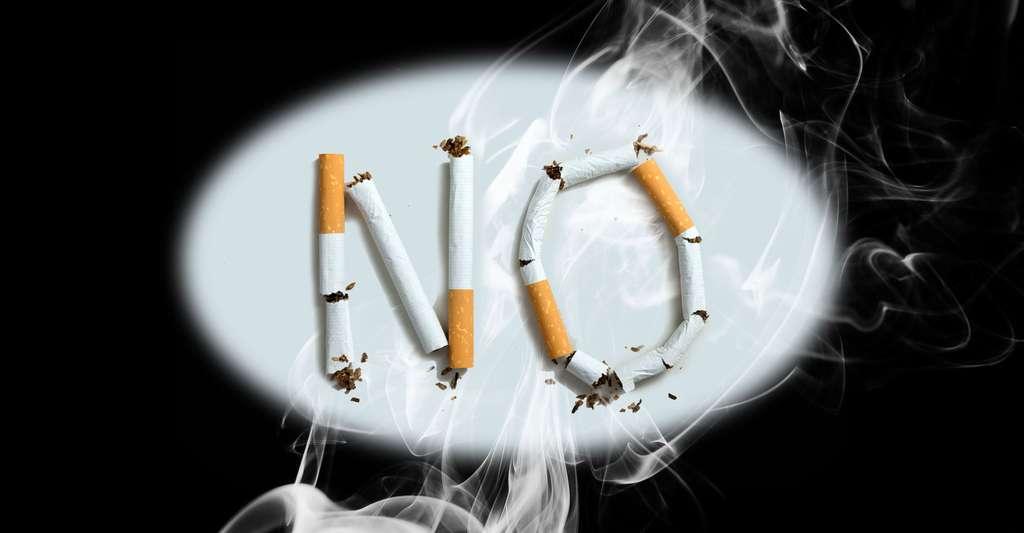 Stop tabac. © Underworld, Shutterstock