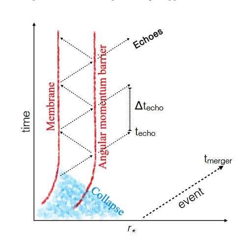 Un diagramme d'espace-temps permettant de comprendre le phénomène d'écho gravitationnel. Un trou noir se forme après effondrement (collapse) de l'astre produit par la fusion de deux étoiles à neutrons. Le trou noir produit vibre selon des modes quasinormaux et émet alors des ondes gravitationnelles qui s'amortissent comme le ferait le son d'un cloche heurtée. Des effets quantiques transforment l'horizon des événements en une sorte de membrane qui va réfléchir les ondes gravitationnelles ; ces dernières ont été elles-mêmes réfléchies par l'existence d'une sorte de barrière (angular momentum barriere) dans la structure de l'espace-temps d'un trou noir pour les ondes se propageant dans cet espace-temps. Les ondes réfléchies rebondissent sur les deux barrières semi-transparentes en perdant de l'énergie sous forme d'ondes qui traversent quand même la barrière la plus externe, ce qui donne lieu à une série d'échos. © Jahed Abedi, Niayesh Afshordi