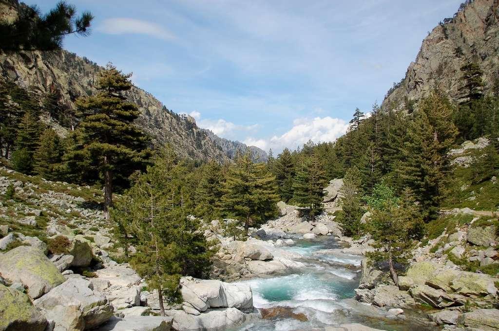 Les gorges de la Restonica offrent des points de vue d'une beauté à couper le souffle. © legabatch